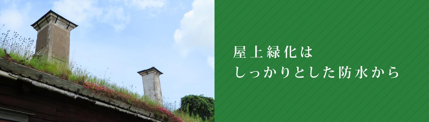 屋上緑化はしっかりとした防水から